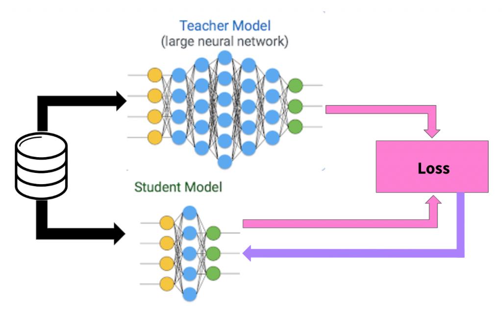 Using the teacher-student model